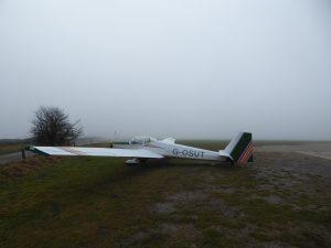 Falke and Fog Feb 6th